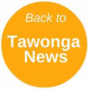 tawonga-news-button