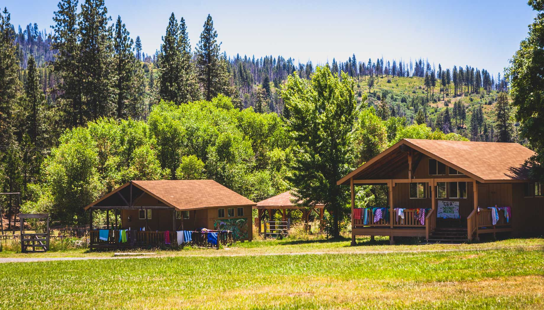 Camper cabins surrounded by trees