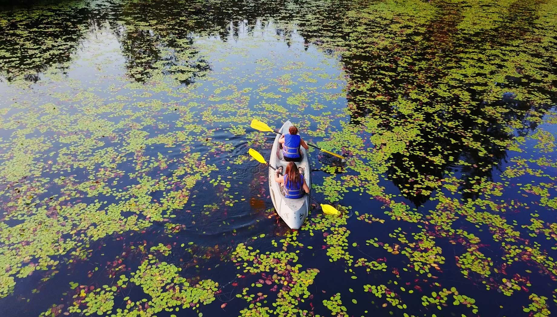 Kids kayaking in pond