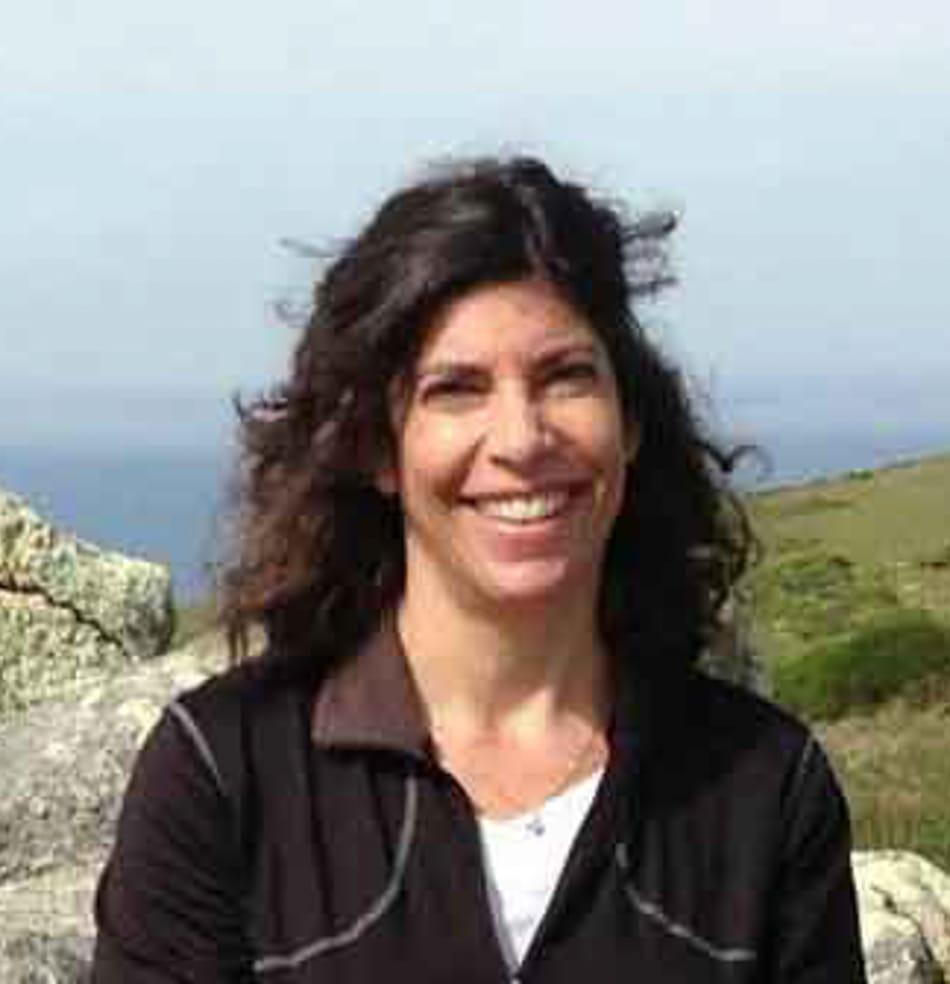Lisa Wertheim, Development Director